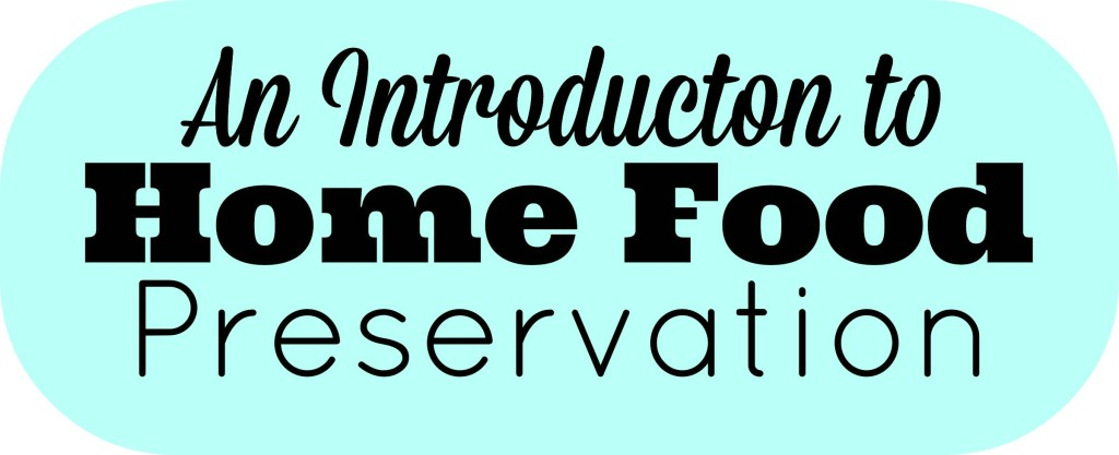 An Intro To Home Food Preservation3